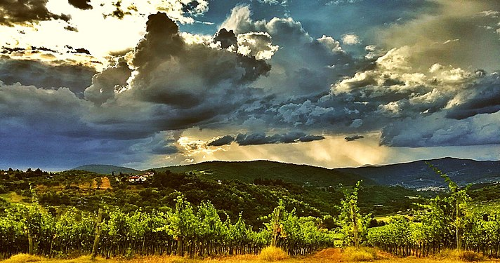Thunderstorm coming on the vineyard - Bufera in arrivo sul vigneto.jpg