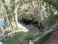 Ticknall Quarries SSSI - geograph.org.uk - 429890.jpg