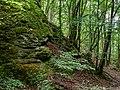 Tiefenstürmig Felsen-20200607-RM-160138.jpg