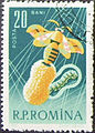 Timbru(2) Sericicultura 1963.jpg