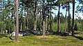 Torsa stenar (Raä-nr Almesåkra 45-1) treudd 0707.jpg