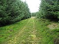 Track end, Hartside Hill - geograph.org.uk - 1438034.jpg