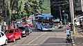 Trans Semarang buses.jpg