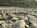 Trishuli river11.jpg