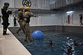 U.S. Marines practice water survival skills with Spanish allies 170215-M-VA786-1227.jpg