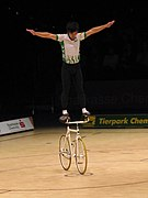 UCI Indoor Cycling World Championships 2006 LvT 21.jpg