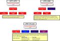 UHS Timeline.PNG