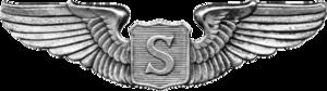 Auxiliary Pilot Badge