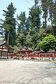 Udamikumari1269.jpg