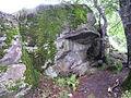 Ukraine-Carpathian Mountains-Polonina Borzha Range-16.jpg