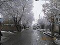 ValiAsr Avenue At Hajjiabad,Zeberkhan 13981022.jpg