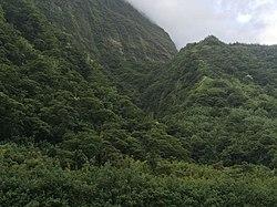 Vallée de Papenoo.jpg
