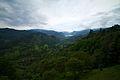 Valle del Cocora, Colombia.jpg