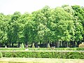 Vaux le Vicomte (1342794871).jpg