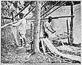Vicols (Bikolanos) preparing Hemp -Drawing out the fibre (c. 1900, Philippines).jpg