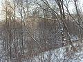 Vidnoye, Moscow Oblast, Russia - panoramio (78).jpg
