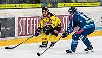 Vienna Capitals vs Fehervar AV19 -84.jpg