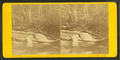 View between the Cascade and the Flume, Franconia Mts., N.H, by H. S. Fifield.png