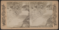 View near Dairy Cottage, Prospect Park, Brooklyn, N.Y, from Robert N. Dennis collection of stereoscopic views.png