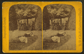 View of a park in Garrettsville with two boys on lawn and a man and two women beyond near trees, from Robert N. Dennis collection of stereoscopic views.png