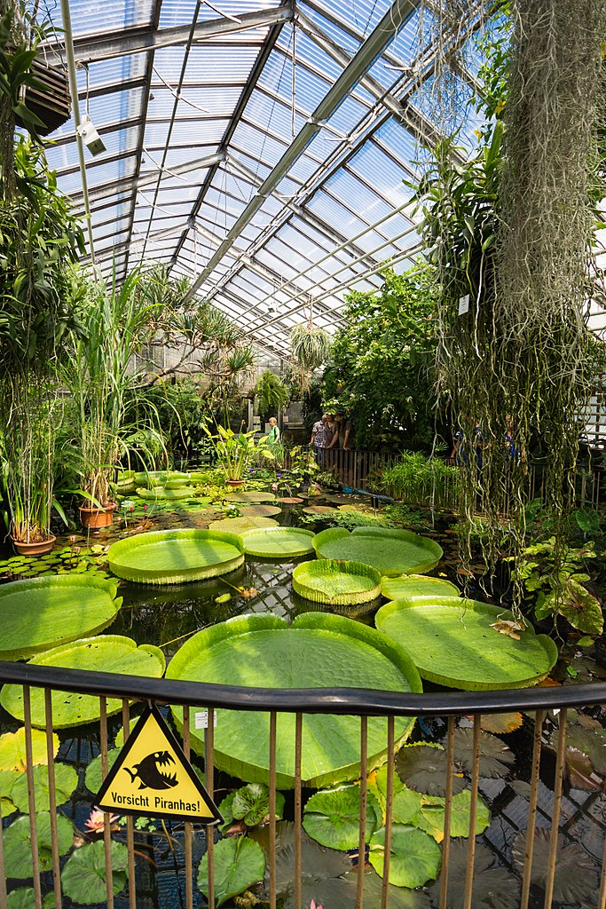 File:Viktoriahaus Botanischer Garten Jena.jpg