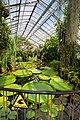 Viktoriahaus Botanischer Garten Jena.jpg