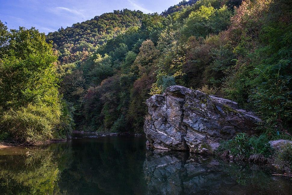 Vlasina reka