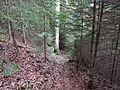 Wanderweg - panoramio (79).jpg