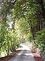Wanderweg Helbetal - panoramio.jpg