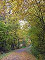 Wanderweg auf der ehemaligen Siebenmühlentalbahn, Schönbuchbahn (1928 - 1960) im Siebenmühlental - panoramio - qwesy qwesy.jpg