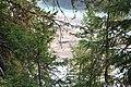 Wapta Falls IMG 4985.JPG