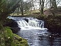Waterfall in the North Medwin. - geograph.org.uk - 361503.jpg