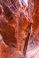 Waterpocket Fold Cliffs in Capitol Reef Nat'l Park - (20116255911).jpg