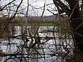 Wetlands by the River Trent at Shelford, Nottingham - geograph.org.uk - 1042832.jpg