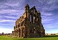 Whitby Abbey image.jpg