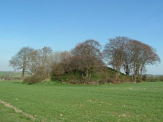 Willy Howe Barrow in the East Riding of Yorkshire, England