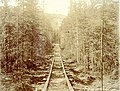Wooden tramway rails of the Canyon and White Horse Rapids Tramway Company, Yukon Territory, ca 1899 (MEED 199).jpg