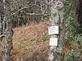 Woods by Loch Morar - geograph.org.uk - 920310.jpg