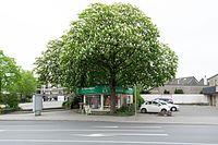 Wuppertal Bahnstraße 2016 016.jpg