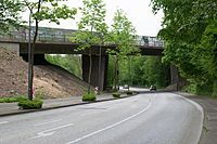 Wuppertal Westring 2016 008.jpg