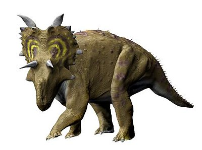 Xenoceratops NT small.jpg