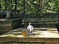 Zakopane - stary cmentarz na Pęksowym Brzyzku...jpg