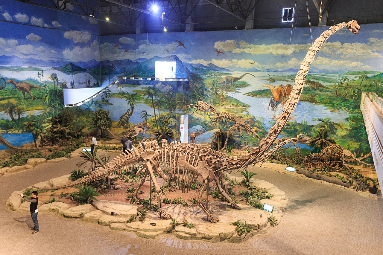File:Zigong Dinosaur Museum Mamenchisaurus hochuanensis ...