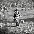 """""""Tišlarček"""" (mizar) Johant nosi vodo na preprostem povirku, ki ga je videl v Tirolih, Pugled 1951.jpg"""
