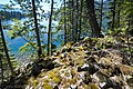 '10 along the Molly Hughes trail, vantage over the Slocan Lake looking South, above the Molly Hughes mine - panoramio.jpg