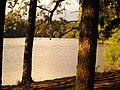 (PL) Polska - Warmia - Ścieżka nad jeziorem Długim w Lesie Miejskim w Olsztynie - Path on the Long Lake in the City Forest in Olsztyn (9.X.2012) - panoramio (12).jpg
