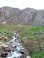 ^^چشمه فخر آباد^ - panoramio.jpg