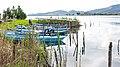 Λιμνοθάλασσα Μεσολογγίου - Αιτωλικού 10.jpg