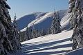 Вид на схили гори Паренки з полонини Плісце.jpg