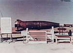 Головная часть ракеты Р-5А и собака Пестрая после спуска.jpg